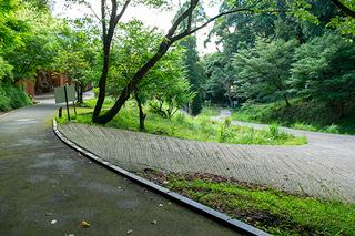 臼杵石仏ギャラリー