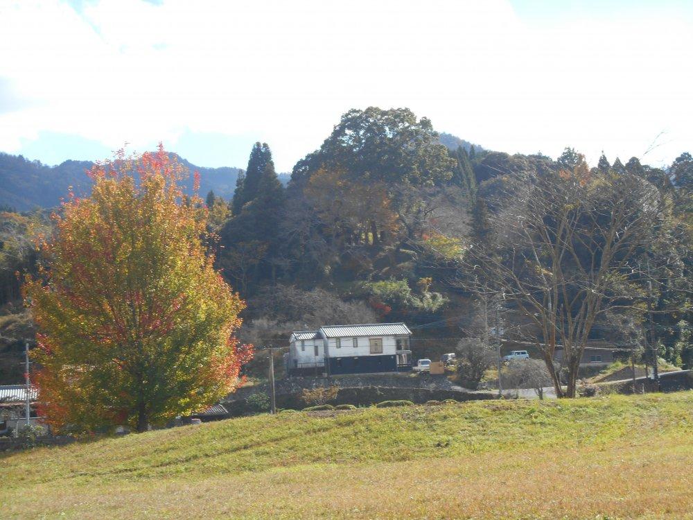 石仏公園の紅葉