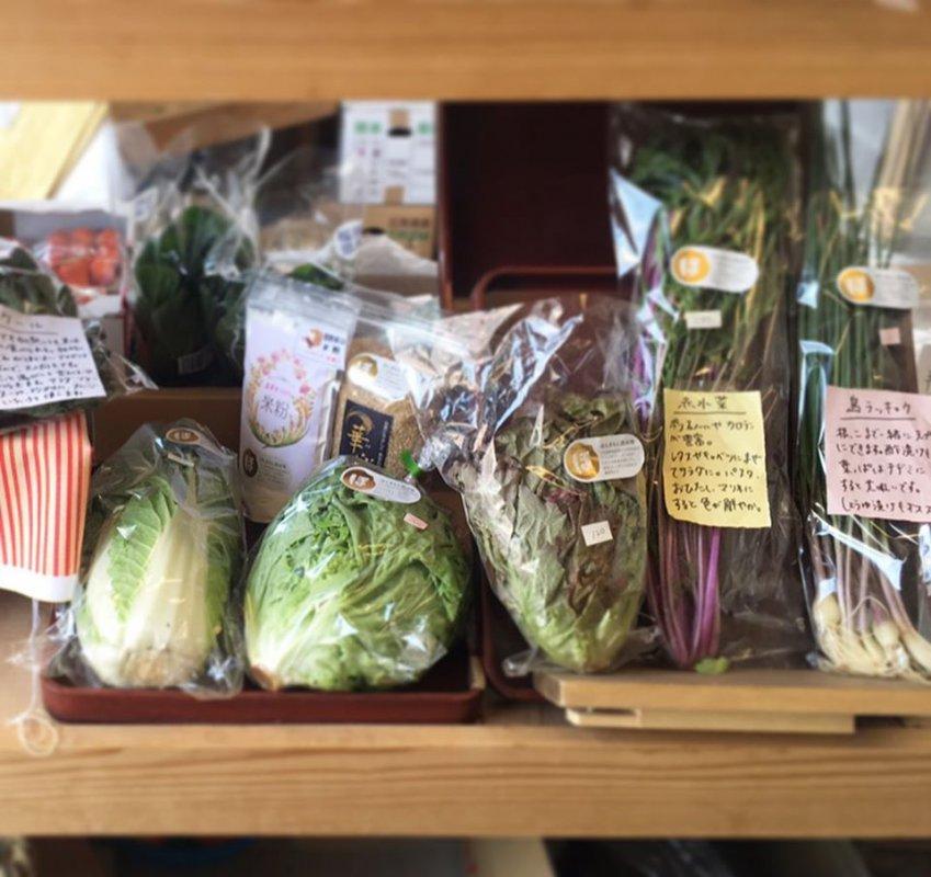葉物野菜も充実