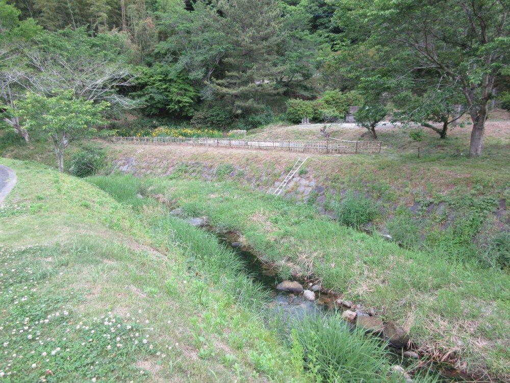 満月寺前の川