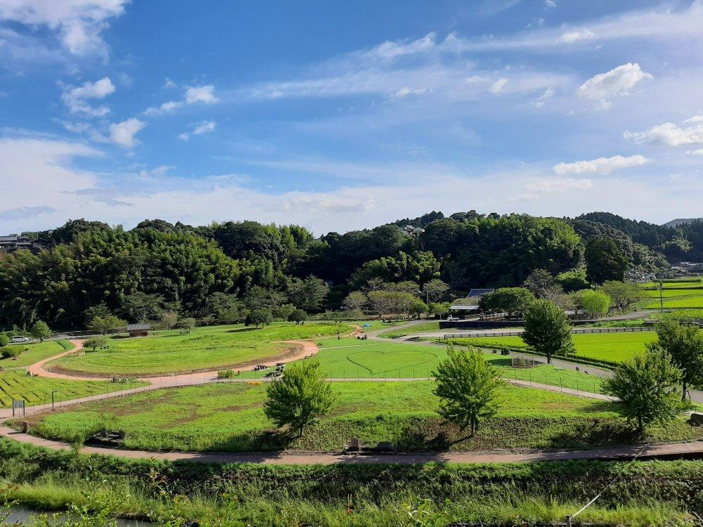 石仏公園、台風後