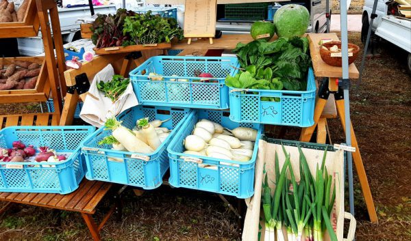 お節に使いたい根菜たち
